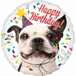 17 inch-es Happy Birthday Szülinapi Francia Bulldog Fólia Lufi