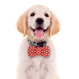 Beszélő Nyakkendő