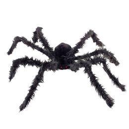Szőrös Pók Világító Szemekkel
