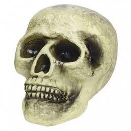Élethű Koponya Dekoráció Halloween-re - 22 cm x 14 cm x 16 cm