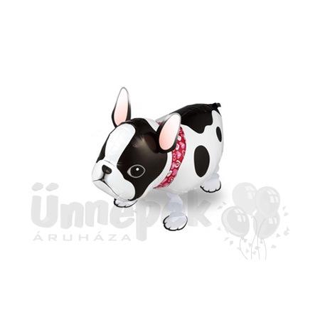 Sétáló Francia Bulldog Héliumos Lufi
