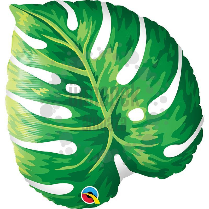 21 inch-es Tropical Philodendron Fólia Lufi