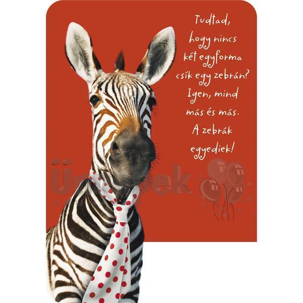 szülinapi képek barátoknak Zebra Képeslap Barátoknak | Party Kellékek Webshop szülinapi képek barátoknak