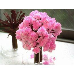 Mágikus Sakura