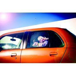 Gyerekek Autós Napellenző