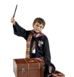 Harry Potter Farsangi Jelmezkellék Láda