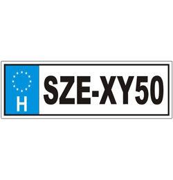 Vicces Rendszámtábla - SZE-XY50 felirattal Szülinapra