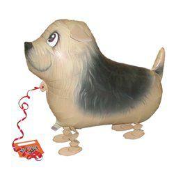 Sétáló Terrier Héliumos Lufi